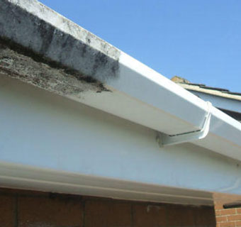 gutter, facia & soffit cleaning