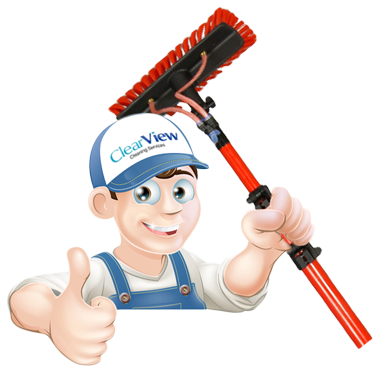 clearview cleaning services character